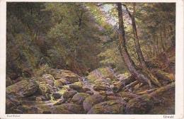 """AK Künstlerkarte """"Urwald"""" - Paul Weber - 1927 (5243) - Ohne Zuordnung"""
