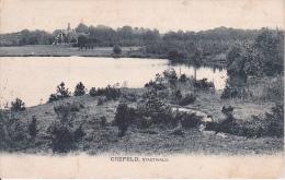 AK Krefeld Crefeld - Stadtwald - 1906 (5267) - Krefeld