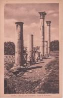 PC Roma - Portico Dell'accademia - Casa Di Domiziano (5291) - Roma