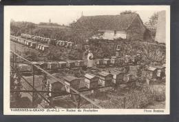 Saone Et Loire : Varennes Le Grand, Rucher Du Presbytere - Francia