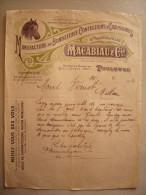 Belle Facture Illustrée Cheval Macabiau & Cie 1910  Bonneterie Confection Chaussures à Toulouse - France