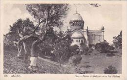 Algeria Alger Notre-Dame d'Afrique entre les oliviers