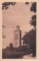 CPA Tlemcen - Minaret D'Agadir (5317) - Tlemcen