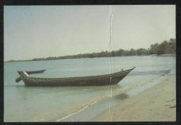 Yemen Red Sea Beach In The Tihama Picture Postcard - Yemen