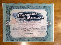 1  Charbonnages De Matallana  Siege     SUISSE   Lausanne  1903  + Coupons - Azioni & Titoli