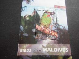 Maldives-Birds - Zonder Classificatie