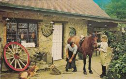 BLACKSMITH SHOING HORSE, GODSHILL, I.O.W. - Agriculture