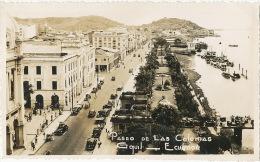 Real Photo Guayaquil Paseo De Las Colonias  Autos Cars 1946 - Equateur