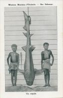 Iles Salomon Un Requin Solomon Islands A Shark Tiburon With African Kids - Solomon Islands