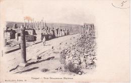 CPA Timgad - Voie Décumanus Maximus - 1903 (5363) - Batna