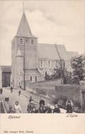 Hannut - L' Eglise - Hannuit