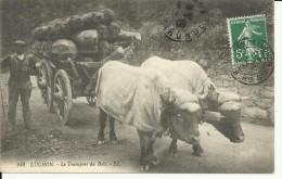 CPA  LUCHON, Le Transport Du Bois 10207 - Equipaggiamenti