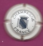 DUVAL N°12 - Champagne