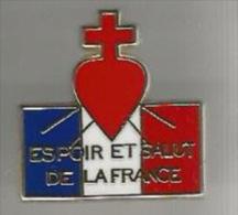 34495-Pin's .Les �claireurs neutres de France.association .dor� a l'or fin..