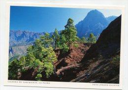SPAIN - AK 200334 La Palma - Caldera De Taburiente - La Palma