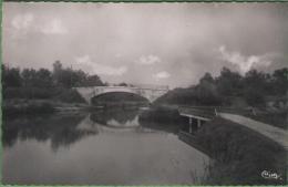 89 ROGNY - Le Canal De Briare - Le Pont Du Rondeau - Andere Gemeenten