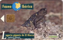 ESPAGNE SPAIN FAUNA IBERICA LAGARTO REPTILE LEZARD 1000 PTAS UT - Télécartes