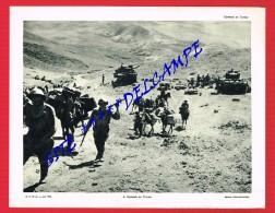 Combats En TUNISIE .....( Guerre...Militaires...Chars...Tanks ...) - Collections