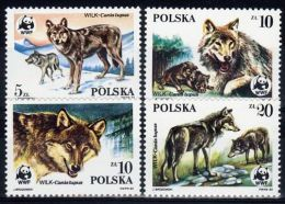 Poland 1985 Series - Mi#2975-78 - World Wildlife Fund / Wolves - PLS138 - Unused Stamps
