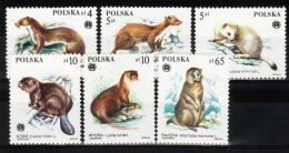 Poland 1984 Series - Mi#2946-51 - Animals Protected - PLS140 - Stamps