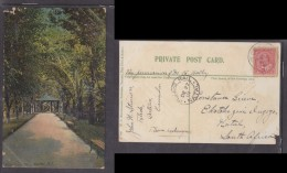 Postcard  Used 1907, TOLEDO, Ontario, Canada To Ekotokozeni Ingogo, INGOGO RAIL NATAL C.d.s. - Afrique Du Sud (...-1961)