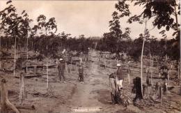 Alte AK  RUBBER ESTATE / Asien  ??  Ca. 1910 - Postcards