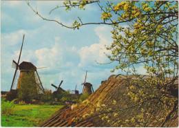 HOLLANDSE MOLEN - Moulins à Vent