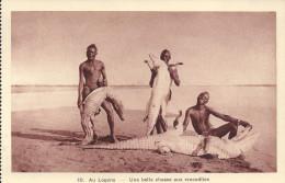 au logone une belle chasse aux crocodiles
