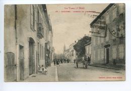 Le Tarn (2è Série) Castres - Avenue De L´Albingue N°95 Phototypie Labouche Frères - Castres