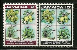 "Jamaica      ""Agricultural Society""    Set     SC# 322-23  MNH** - Jamaica (1962-...)"