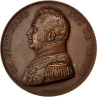 [#62813] Charles Ferdinand Duc De Berry, Médaille, Hommage Du Département Du Nord - Royaux / De Noblesse