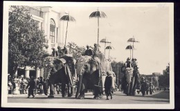 AK     AFGHANISTAN  KABOUL     ELEPHANTS - Afghanistan