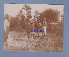 Photo Ancienne - MAGHREB - Entretien D'un Cheval - Etalon Arabe ? - Maroc Tunisie Algérie - Africa