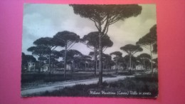 Milano Marittima (Cervia) - Ville In Pineta - Ravenna