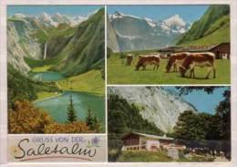Saletalm Am Südl. Ende Des Königssees Mit Kaunerwand Und Teufelshörnern , Mehrbildkarte - Bad Reichenhall