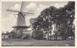 Architecture - Moulin à Vent  De Sluis Pays-Bas - Moulins à Vent