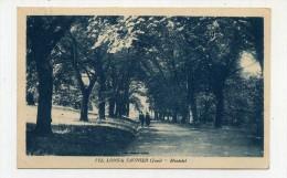 CP , 39 , LONS-le-SAUNIER , Montclel - Lons Le Saunier