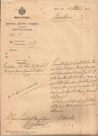 AUTOGRAFO MINISTRO AGRICOLTURA DOMENICO BERTI DA CUMIANA 1881 - Autographs