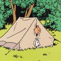 @@@ MAGNET - Tintin - Reclame