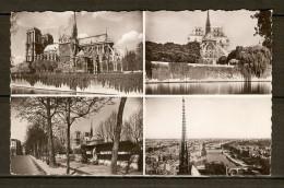 PARIS    -    Cathédrale  NOTRE-DAME   /   Les Bouquinistes - Notre Dame De Paris