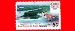 CUBA - USATO - 2007 - Turismo & Fauna - Los Cayos De Cuba - Cayo Ensenachos - Chorlito - 50 - Cuba
