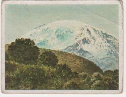 Zigaretten Sammelbild Deutsche Kokonien Bild Nr 12 Südseite Des Kibo Kilimandscharo Bulgaria Dresden - Cigarette Cards