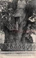 76 - Allouville Bellefosse - Lot 2 Cpa -  Gros Chêne D'Allouville  - écrites - 4 Scans - Allouville-Bellefosse