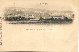 BACCARAT - Vue Générale Des Cristalleries - Côté Est                 -- Nicolas - Baccarat