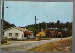 Jolie CP 33 Saint Isidore La Route Du Pin Sec - Ed Elcé N1 - Magasin Castelvin - Cp Pas écrite - Other Municipalities