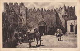 JERUSALEM - DAMASCUS GATE - Palestine