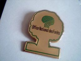 Office national des for�ts,arbre