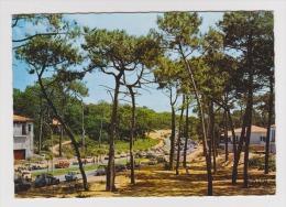 33 - ARCACHON - Parc Pereire Avenue Principale - Éditions Renaud & Buzaud N° 37 - Animée - 1967 - 2 Scans - - Arcachon