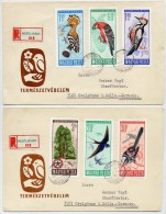 HUNGARY 1966 Protection Of Birds Set On 2  FDCs.  Michel  2231-36 - FDC