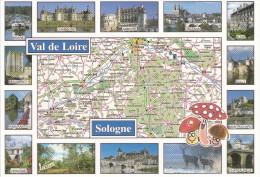 Carte Géographique De  Sologne , Champignons , Loiret , Loir Et Cher , Cher . Multi Vues Villes Et Châteaux - Cartes Géographiques